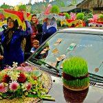 جشنواره سراسری شمیم بهار - امیر علی جوادیان ، راه یافته به بخش حرفه ای | نگارخانه چیلیک | ChiilickGallery.com