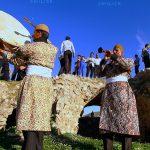 جشنواره سراسری شمیم بهار - هادی کریمی ، راه یافته به بخش حرفه ای | نگارخانه چیلیک | ChiilickGallery.com