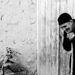 نمونه آثار محمود بازدار
