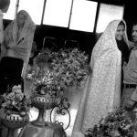 جشنواره عکس دانشگاه آزاد اسلامی - سید محسن سجادی | نگارخانه چیلیک | ChiilickGallery.com