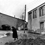 مهدی وثوق نیا عکاس ایرانی