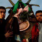 فرهاد سلیمانی عکاس ایرانی