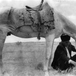 مریم زندی عکاس ایرانی