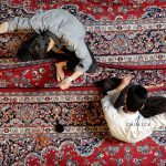 اولین دوره مسابقه عکس فرش دستباف - آرش احمدزاده | نگارخانه چیلیک | ChiilickGallery.com