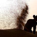 بخش جنبی جشنواره مطبوعات - حسین الوندی | نگارخانه چیلیک | chiilickgallery.com