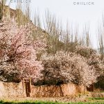 ایران، بهشت زمین - ساسان مویدی | نگارخانه چیلیک | chiilickgallery.com