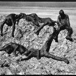 داریوش محمدخانی عکاس ایرانی