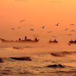 بخش جنبی جشنواره مطبوعات - سید حسن حسینی | نگارخانه چیلیک | chiilickgallery.com