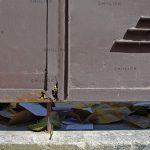 دومین جشنواره گرانتر از طلا - سیده مریم ری شهری | نگارخانه چیلیک | ChiilickGallery.com
