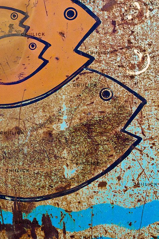 ششمین جشنواره هنری آب - صابر قاضی | نگارخانه چیلیک | ChiilickGallery.com