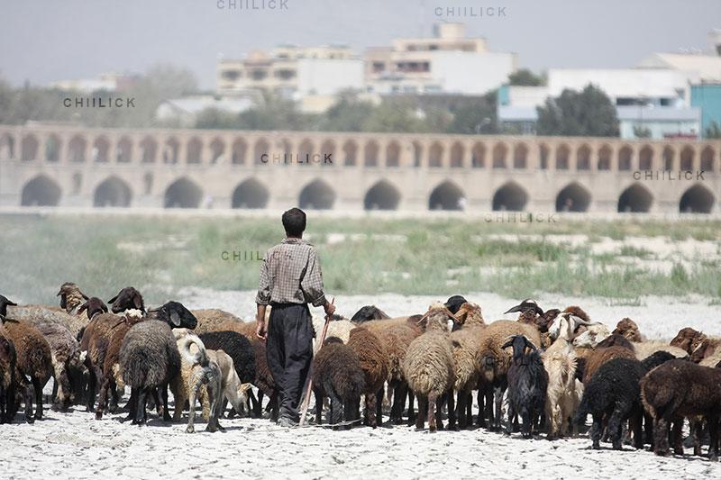 ششمین جشنواره هنری آب - حسين بهارلو | نگارخانه چیلیک | ChiilickGallery.com