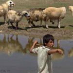 حسن غفاری عکاس ایرانی