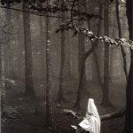 محمدعلی غریقی عکاس ایرانی