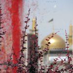 جشنواره ملی عکس رضوی - علی اسدی | نگارخانه چیلیک | ChiilickGallery.com