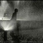 بهنام صدیقی عکاس ایرانی