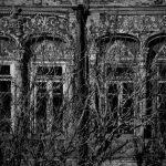 دومین جشنواره عکس فیروزه - ابراهیم سیسان | نگارخانه چیلیک | ChiilickGallery.com