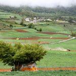 جشنواره محیط زیست مازندران - امین کوشا | نگارخانه چیلیک | ChiilickGallery.com