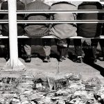 دومین جشنواره عکس فیروزه - مسعود بهروان | نگارخانه چیلیک | ChiilickGallery.com