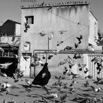 دومین جشنواره عکس فیروزه - شاهرخ حیدری | نگارخانه چیلیک | ChiilickGallery.com