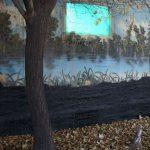 دومین جشنواره عکس فیروزه - احمد زینالی نامدار | نگارخانه چیلیک | ChiilickGallery.com