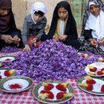جشنواره ملی عکس تعاون - امیر قادری ، شایسته تقدیر در بخش حرفه ای | نگارخانه چیلیک | ChiilickGallery.com