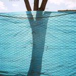 نمایشگاه سالانه عکاسان قزوین - هستی ظهیری | نگارخانه چیلیک | ChiilickGallery.com