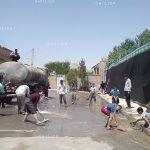 جشنواره ملی عکس تعاون - محسن دهقان پور ، شایسته تقدیر در بخش آماتور | نگارخانه چیلیک | ChiilickGallery.com