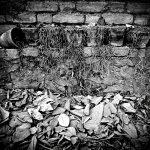 چهارمین جشنواره عکس زمان - سعید عامری ، نگاه آزاد و خلاق به مفهوم زمان | نگارخانه چیلیک | ChiilickGallery.com