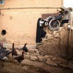 جشنواره عکس سلامت نیشابور - احسان کمالی ، رتبه اول | نگارخانه چیلیک | ChiilickGallery.com