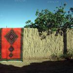 دومین مسابقه عکس فرش دستباف - سید محسن سجادی | نگارخانه چیلیک | ChiilickGallery.com