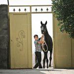 نخستین نمایشگاه صنعت اسب - امین نظری | نگارخانه چیلیک | ChiilickGallery.com