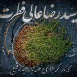 منصوره قلیچی عکاس ایرانی