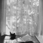 آندره کرتس عکاس خارجی