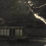 ژاک هانری لارتیگ عکاس خارجی