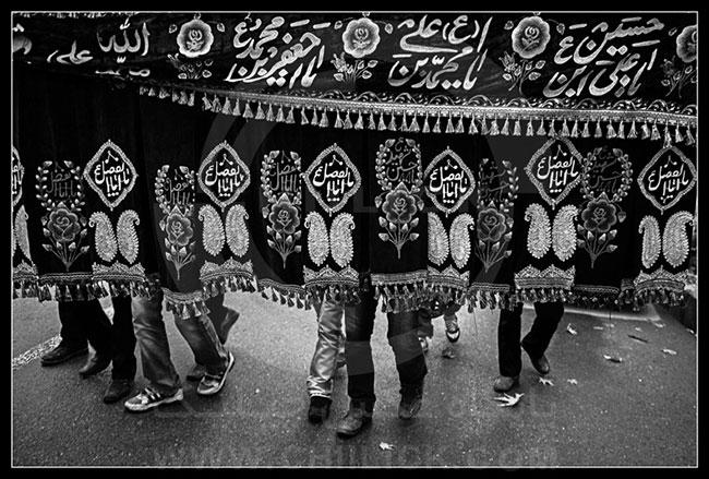 عین عاشورا - مجتبی محسنی