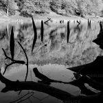 تور عکاسی از دریاچه چورت - عکاس: سیدصادق موسوی
