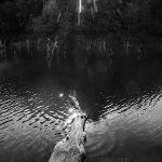 تور عکاسی از دریاچه چورت - عکاس: محمدرضا خرازی