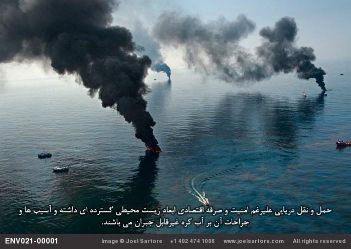 رسانه عکس و هنر حفاظت محیط زیست