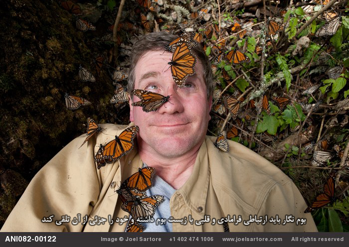 Joel Sartore on assignment at Sierra Chincua in Mexico, home to the world's largest gathering of monarch butterflies. (Image ID: ANI082-00122)