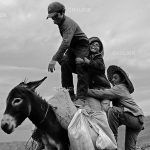 مجید خالقی مقدم عکاس ایرانی