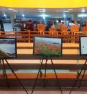 گشایش نمایشگاه عکاسان محیط زیست در گردهمایی دانشجویی حامی محیط زیست