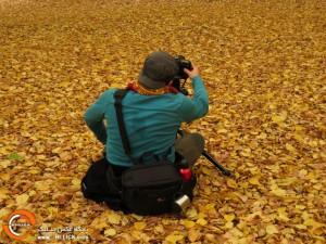 تور عکاسی پاییز جنگل گلستان | عکاس: سپیده سیرانی
