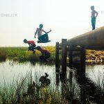 مدیار شجاعی فر | CHIILICK
