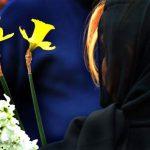 احمد ناطقی - بانک اطلاعات عکاسان ایرانی