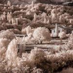رامین کاکاوند | CHIILICK