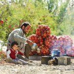 محمد وروانی فراهانی عکاس ایرانی