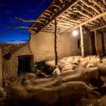 عکاس: امیرحسین رضایی، مسابقه عکس خانه روستایی، عکس برگزیده بخش مسکن معیشت محور