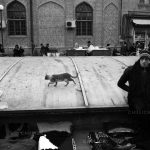 عکاس: حمید پورموسی   راه یافته به بخش چهره شهر هفتمین جشنواره عکس فیروزه تبریز