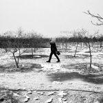 عکاس: سهیل شفیعی   راه یافته به بخش چهره شهر هفتمین جشنواره عکس فیروزه تبریز