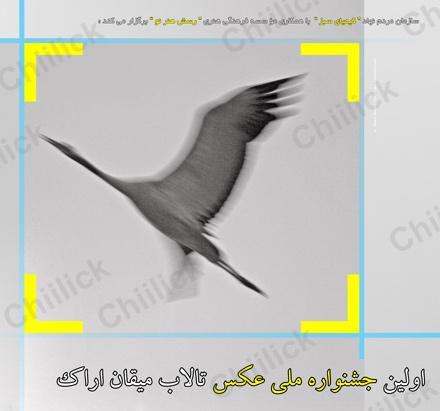جشنواره ملی عکس تالاب میقان اراک